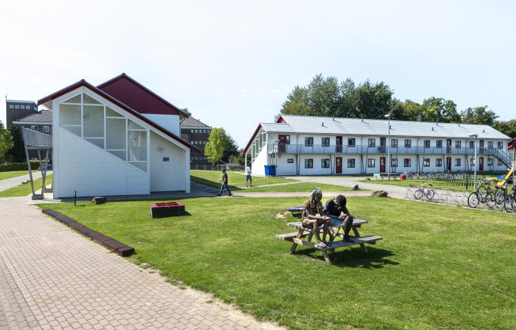 Asielzoekers op picknicktafel bij azc Heerlen