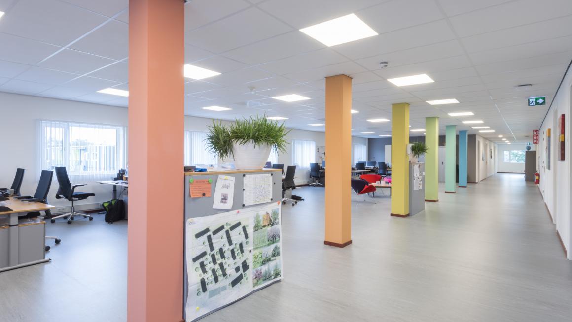 Kantoorruimte met gekleurde pilaren en meerdere bureau's en bureaustoelen