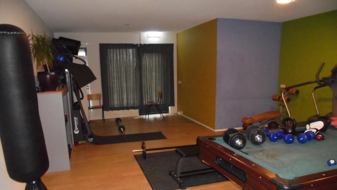 Gameroom/fitnessruimte met gekleurde muren en o.a. biljarttafel, boksbal en gewichten