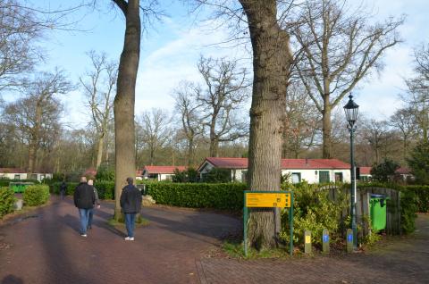 3 mannen lopen over terrein azc